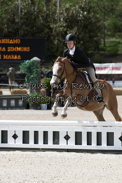 $10,000 Stal de Eyckenhoeve Hunter Derby 2' & 2'6""