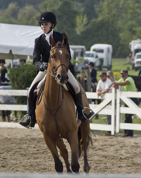 horseshow10-bobg_24_20141019_1314637963.jpg