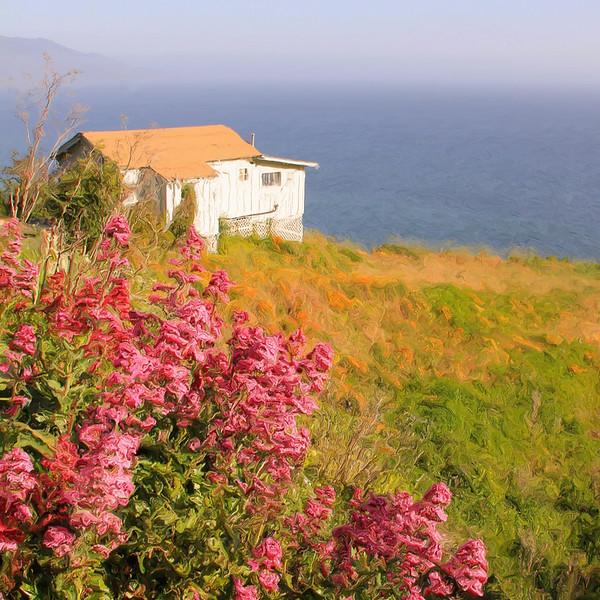 Lucia Inn Flowers