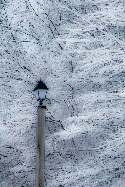 Winter Wonderland in Vermont-6.jpg