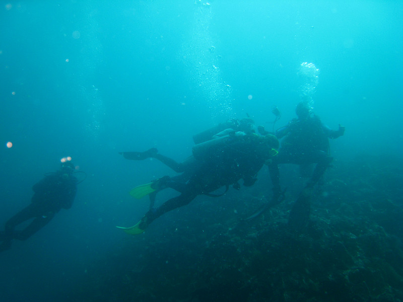 Diving in the Galapagos (273 of 392)