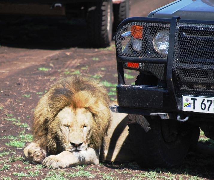Ngorongoro (100).JPG