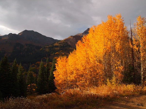 San Juan Mountains, Fall Colors tour, 2011