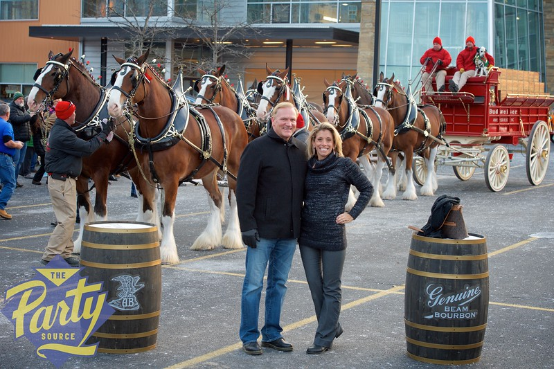 Clydesdale Portraits 254.jpg