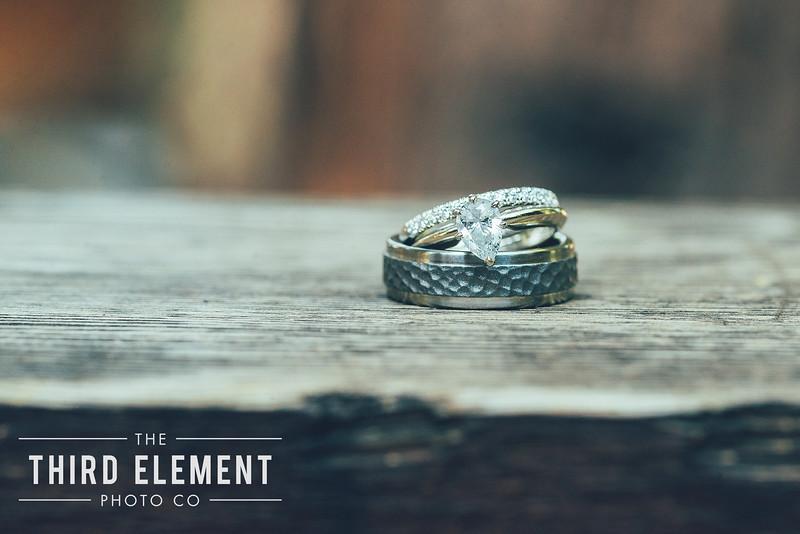 Third Element Photo Co Brittney + Errol Yosemite Wedding Hetch Hetchy San Francisco_0003.jpg