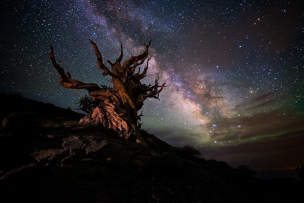 April 30th - May 1st - Alabama Hills & Bristlecone Pine Astrophotography Workshop