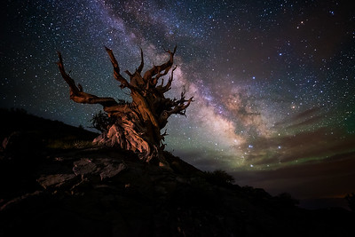 Starscapes & Astrophotography