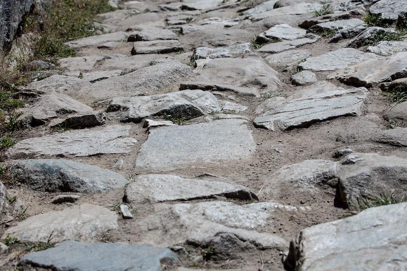 Machu Picchu_MG_3317.jpg