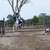 06W27S99 Horses