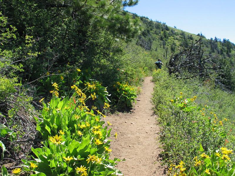 BLk Butte hike IMG_2930.JPG