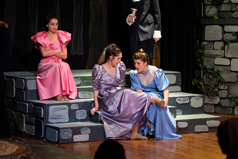 2018-03 Into the Woods Performance 0529.jpg