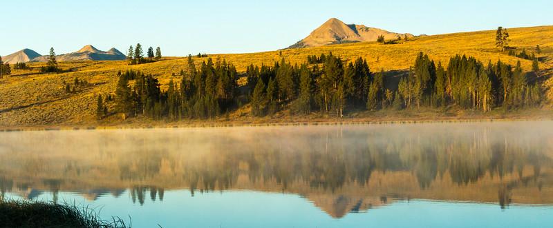 Swan-Lake-5.jpg