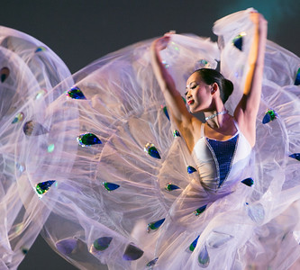 2014 Chapter I - New England Chinese Dance Festival