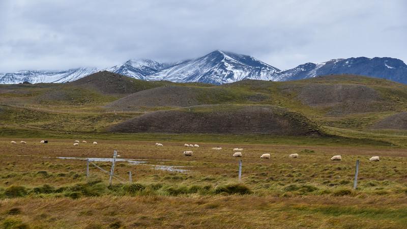 Iceland_2015_10_04_15_57_52.jpg