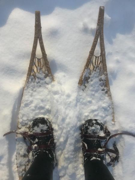 winter 2018 (& mexico)