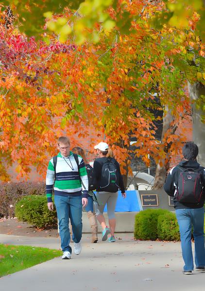 campus3170.jpg