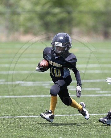 Fountain Black Knights 6U