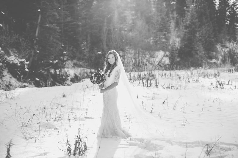 Bridals-84.jpg