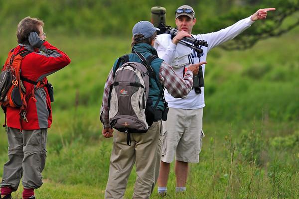 Jun 02 2012 - Birding Festival 2012