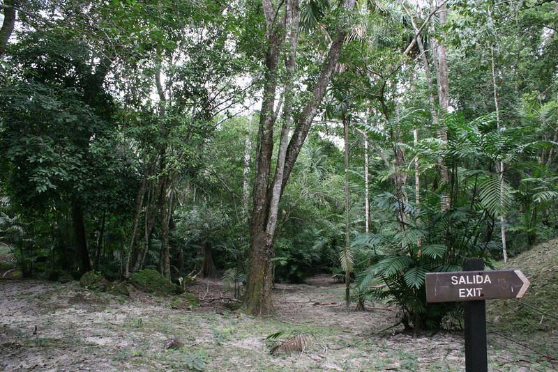 Guatemala Tikal 0 155.JPG