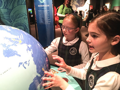 1st and 3rd Grade Trip to National History Museum