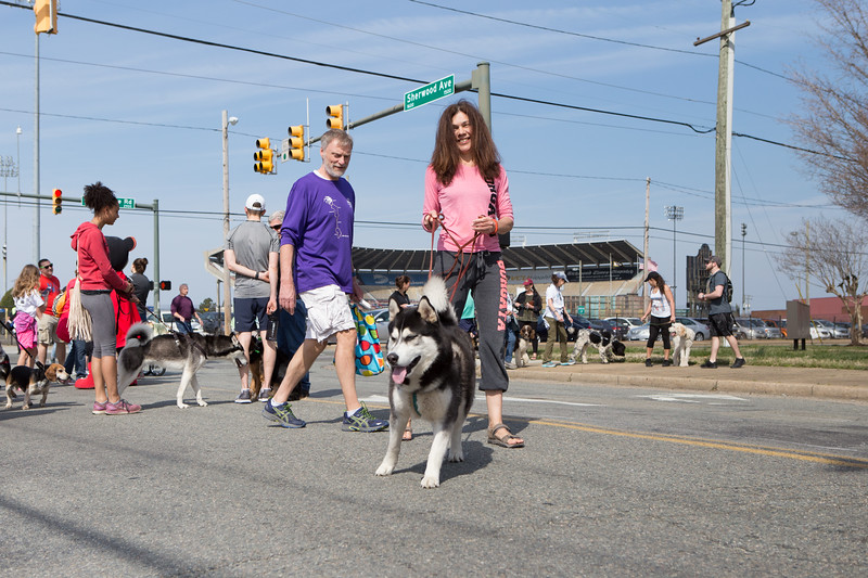 15thRichmondSPCADogJog-514.jpg