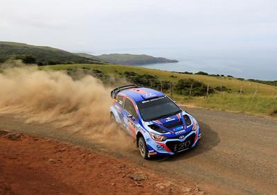 Rally New Zealand 2017