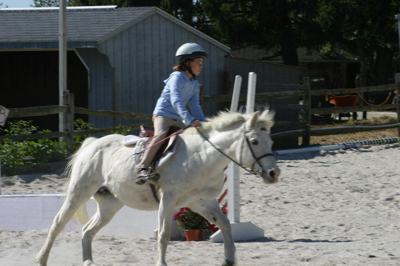 Nina cantering.  She got first place in walk/trot and walk/trot/canter