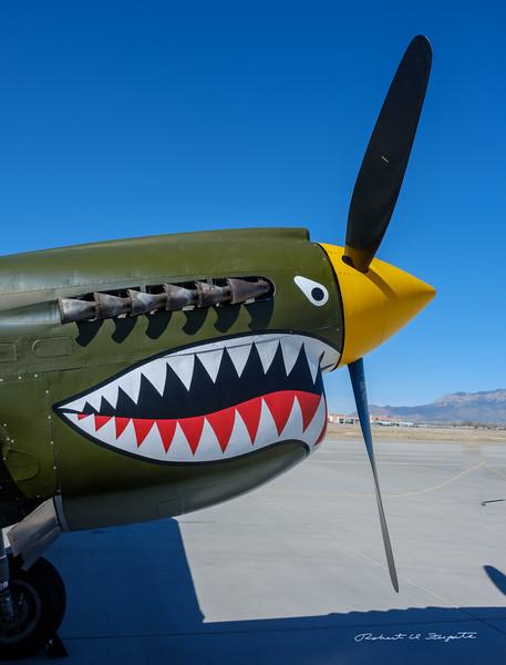 The Curtiss TP-40N Warhawk
