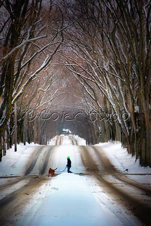 Luzerne Street - Winter
