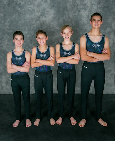 Premier Gymnastics of the Rockies Boys Level 4-6 + Optionals