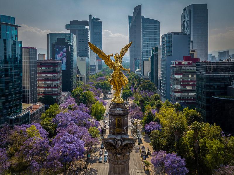 20190324_Reforma_DJI_0435-Edit-Edit-Edit-2.jpg