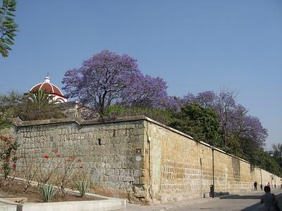 Oaxaca - 2009