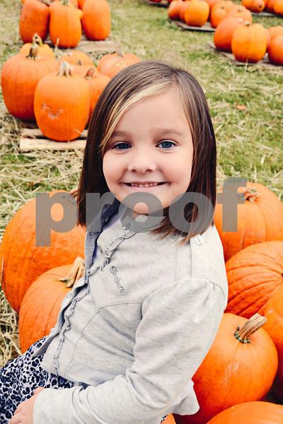 Pumpkin Patch 2012