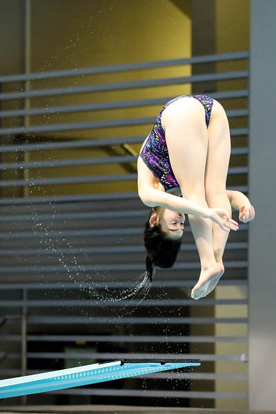 Singapore_National_Diving_Championship2018_2018_07_01_Photo by_Sanketa Anand_610A7499.jpg