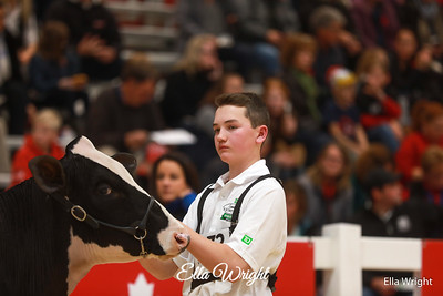 TD Classic Royal Winter Fair