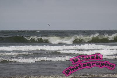 8-1-09 Longbeach & Seaside