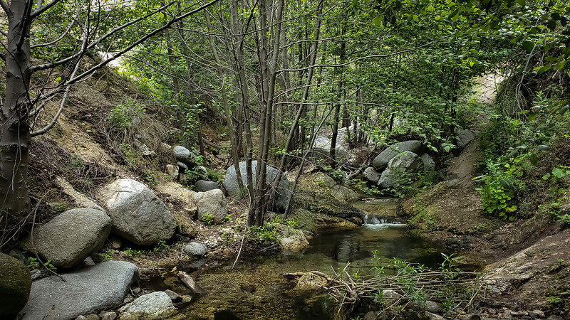 20190621205-Switzer Falls, Bear Canyon.jpg