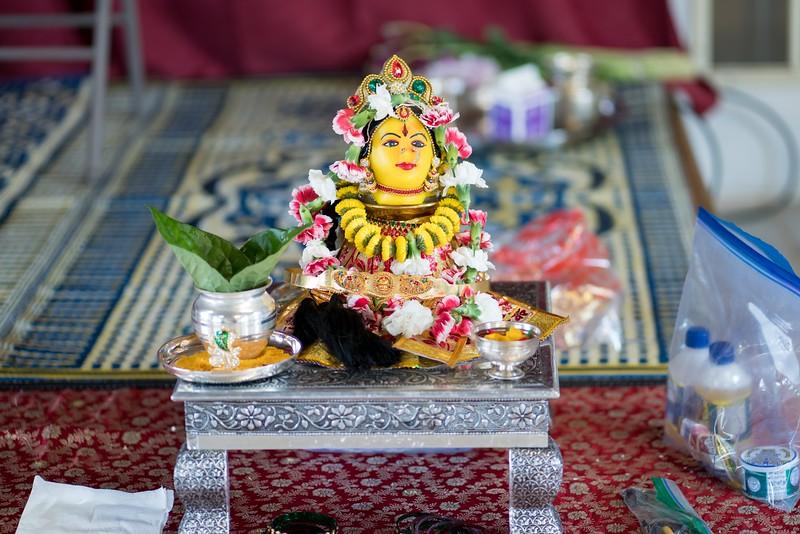 Erin_Harsha_Hindu_Wedding-6.jpg