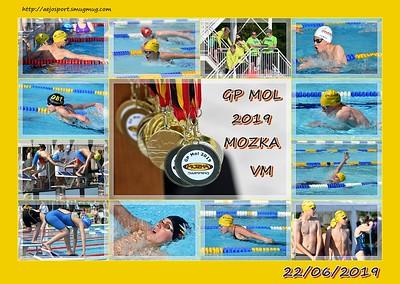 GP Mol 2019 @ MOZKA Mol  22/06/2019 (vm)