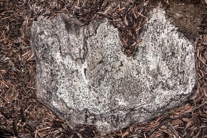 774-DSC_4620 Tripartite Wood Art Object.jpg.jpg