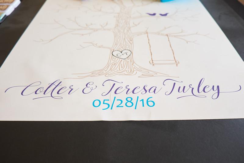TeresaCoulter_3.jpg