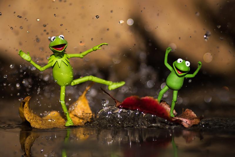 Kermit and Robin Leaf Rapids