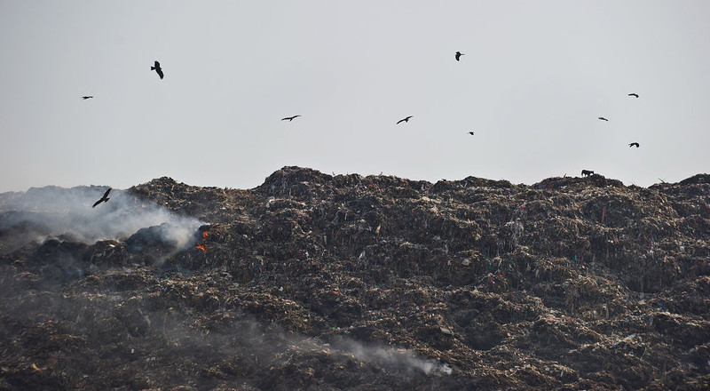 . Birds circle as trash burns on one of the capital\'s garbage landfills at Gazipur in New Delhi on June 4, 2013, on the eve of World Environment Day.  As per newspaper reports, the Indian capital produces 9,000 tons of garbage daily. India\'s cities are becoming more polluted and unhealthy, according to a new survey published Monday showing growing concern about the impact of high economic growth on the environment.    PRAKASH SINGH/AFP/Getty Images