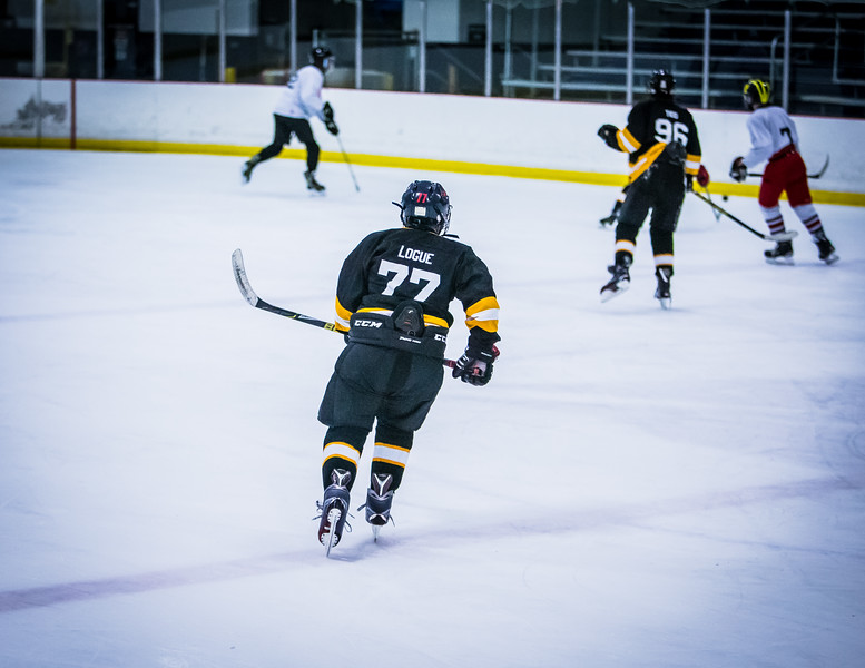 Bruins2-446.jpg