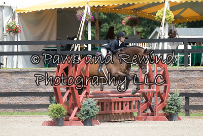 OPEN EQUITATION 12-14
