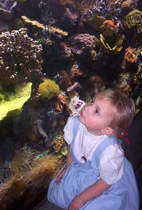 Rachel at aquarium 2.jpg