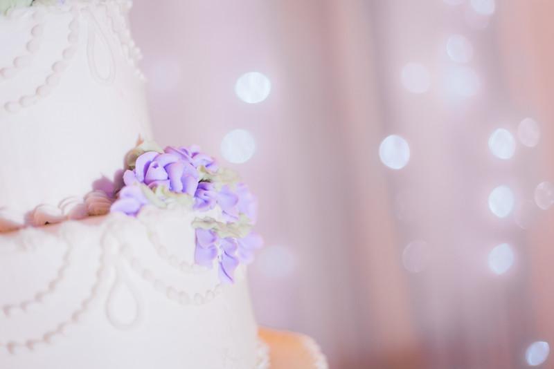 ELP0312 DeRoxtro Oak-K Farm Lakeland wedding-1718.jpg