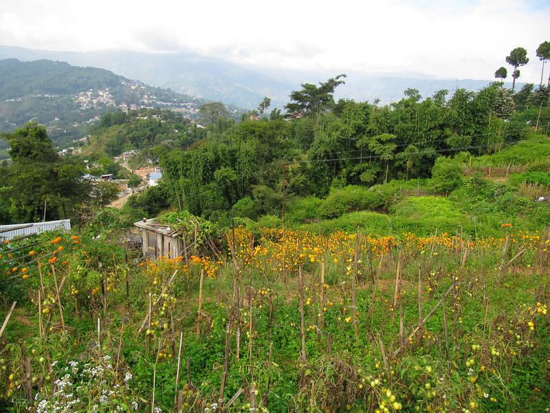 Dhankuta ridge hike7.JPG