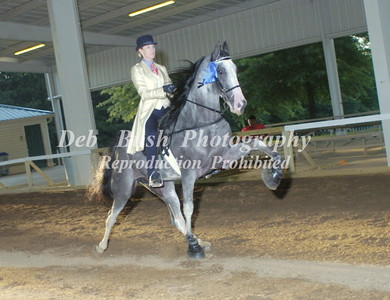 CLASS 26  AMATEUR 15.2 AND UNDER SPECIALTY